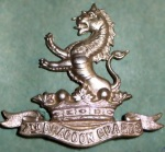 7th Dragoons Badge